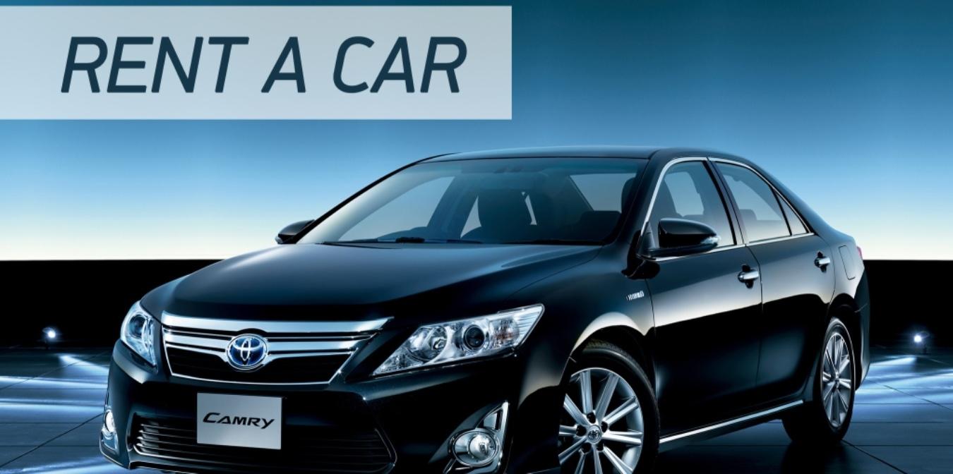 rent a car, car rentals